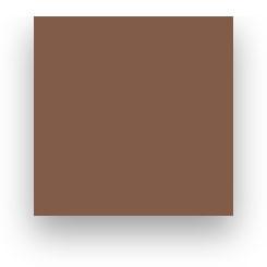 Fond Papier Colorama #80: Peat Brown