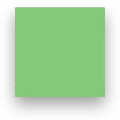 Fond Papier Colorama #59: Summer Green