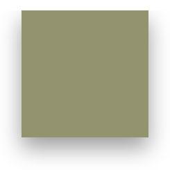 Fond Papier Colorama #97: Leaf