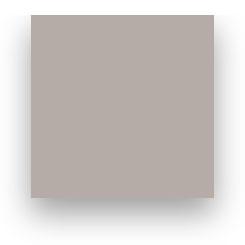 Fond Papier Colorama #81: Platinum