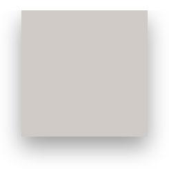 Fond Papier Colorama #87: Silver Birch